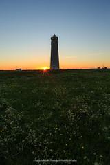 Today's Sunrise. (Kjartan Gumundur) Tags: sky lighthouse grass sunrise canon landscape iceland ngc arctic garur canonef1635mmf28liiusm photoguide canoneos5dmarkiii kjartangumundur
