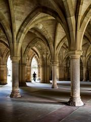 Wandering through (Iain Husbands) Tags: scotland university glasgow omd 2016 em5