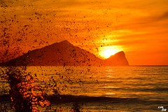 (Clonedbird  & Iris ) Tags:           sunrise longexposure landscape dawn d810 nikon taiwan