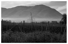 untitled (giovannifiorillo93) Tags: blackandwhite solitude landscape timeline always love