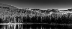 Echo Lake (rogerbrownphoto) Tags: trees blackandwhite bw lake mountains colorado echolake mtevans