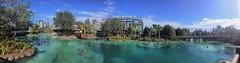 Disney Springs (Thanks for 1.5 Million Views!!) Tags: trees sky water sign clouds scenic disney disneyworld wdw waltdisneyworld centralflorida disneysprings chadsparkesphotography morimotoasia morimotoasiarestaurant springsbottlingco