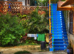 Wash Day Monday! (Ken Yuel) Tags: cleaning staircase sayulita laundryday washday beautifularchitecture digitalagent kenyuel saulitamexico mondaylaundry washdaymondays bluewoodenstairs mexicobeauty