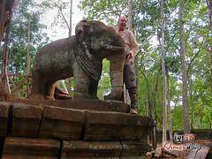 Elephant- Koh Ker.jpg