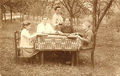 An outdoor zither lesson (1917) (pellethepoet) Tags: vienna wien trees girls boy garden children table austria europe pattern chairs postcard photograph tablecloth zither rppc realphotopostcard