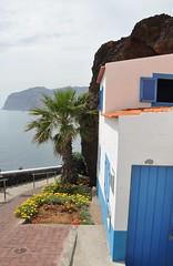 (Kim van Dijk photography) Tags: ocean sea house portugal rock de island coast nikon palm lobos madeira camara funchal d90 nikond90 kimvandijk