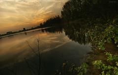 Reflection in the water (Beukiegirl) Tags: sun holland reflection nature water nederland nl plassen rijkerswoerd rijkerswoerdse yahoo:yourpictures=nature