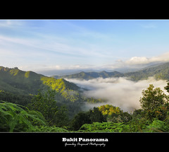 ::Panorama:: (Green.Boy) Tags: park wood travel blue summer sky sun sunlight lake motion tree green fall tourism nature wet water beautiful beauty grass sunshine rock stone forest river landscape flow waterfall leaf spring pond stream day natural outdoor background scenic croatia sunny nobody fresh clean foliage national environment splash cascade plitvice splashing