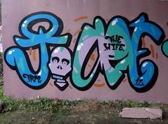 Sugar (mr_la_rue) Tags: street uk urban streetart art fun skull graffiti paint character graf gateshead graff aerosol 2012 toupe