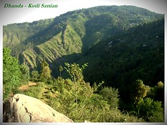 Beauty in Everything (PowerCurve99) Tags: new blue green nature beauty landscape view hills pines valley lush breathtaking valleys islamabad grassy murree ghel kohistan galiyat patriata kahuta galliat narh kotlisattian dhanda kohsar dheerkot dhirkot khalabutsattian malotsattian waghal