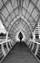 Tunnel of Lurve! (Digit@l Exposure) Tags: city bridge liverpool river crossing whale footpath mersy