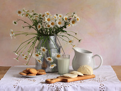 How Many Milky Ways Are There? (panga_ua) Tags: flowers stilllife white art floral cookies composition daisies canon spectacular milk artwork mood artistic handmade availablelight may ukraine poetic creation imagination natalie dairy comfort arrangement slices tabletop saucer springtime gettyimages bodegon rectangular cuttingboard naturemorte panga creamjug milkyway artisticphotography rivne naturamorta cottagecheese artphotography sharpfocus glassofmilk milkproducts perfectmorning tableglass kitchenboard milkcanister  nataliepanga pastelsbackground howmanymilkywaysarethere granyonyistakan granchak richelieuembroiderytablecloth