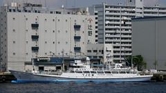 #3812 training boat from Shizuoka (Nemo's great uncle) Tags: tokyo boat 東京 minatoku 船 takeshiba 港区 竹芝桟橋 海岸一丁目 kaigain