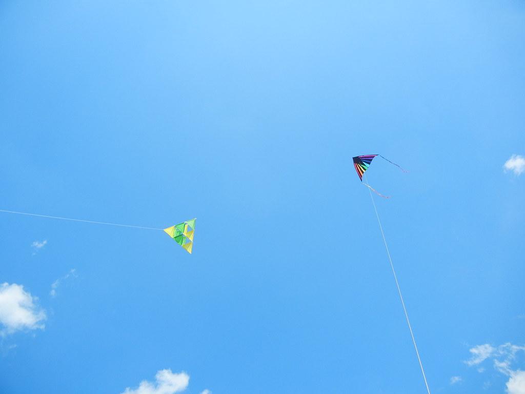 July 2011 Group W flying our homemade kites at Fort Mott (3) (rosathorns