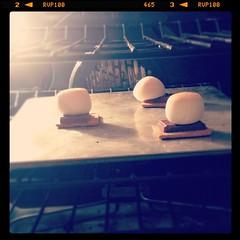 - (chartothelatte) Tags: girls summer oven chocolate c cook marshmallow smores melt ha hahahaha nom laughingatmyself youmakemesmile ohmemories nomnom becauseofthat instagram andicantwaitforthissummer lolinstagraham