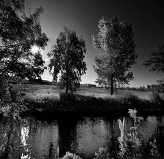 ... forse domani pioverà ancora ... (UBU ♛) Tags: blancoynegro water blackwhite noiretblanc blues dreams biancoenero blupolvere bluacqua ©ubu unamusicaintesta landscapeinblues bluubu luciombreepiccolicristalli