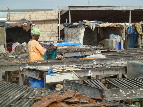 Woman standing among tables of fish drying in Yoff, Dakar district, Senegal. Photo by Anne Delaporte, 2011