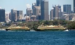 Collaroy, Freshwater, Sydney Harbour (dunedoo) Tags: sydney australia nsw newsouthwales sydneyharbour freshwater manlyferry collaroy sydneyferries