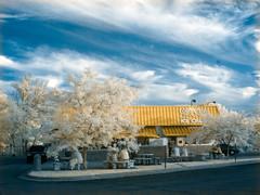Frosty Boy Ice Cream (bill.d) Tags: roof sky cloud tree umbrella outside restaurant evening michigan unitedstatesofamerica infrared kalamazoo trashcan picnictable kalamazoocounty frostyboy 720nm ricohcapliogx100 topazadjust cottageinnpizza hoyainfraredr72filter khromageryfalsecoloraction