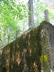2012-050438 (bubbahop) Tags: ruins thirdreich nazis wwii poland worldwarii wolfs hitlers worldwar2 2012 lair hqs bunkers okh ketrzyn wolfsschanze mamerki kętrzyn mauerwald europetrip25