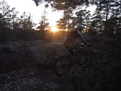 IMG_7078 (dileno) Tags: cycling mtb tmck fredrikshof