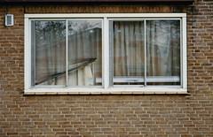 askew (ding ren) Tags: film window analog 35mmfilm blinds curtains analogphotography filmphotography dingren