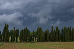 temporale in arrivo? (ELENA TABASSO) Tags: nuvole grigio cielo temporale