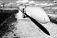 wind power (morag.darby) Tags: blackandwhite bw monochrome field scotland nikon noiretblanc outdoor glasgow depthoffield blade nikkor depth dop windturbine windfarm whitelee d3300
