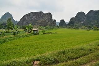tam coc - vietnam 57