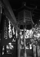 Wooden Lantern (RunnyInHongKong) Tags: film japan mediumformat tokyo 6x45 kodaktmax400 nezu mamiya645protl nikoncoolscan9000 mamiyasekor80mmf19 nikonscan41