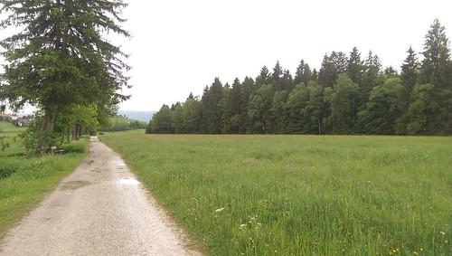 Weg vom Hopfensee nach Eschach