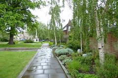 Tower Gardens (yellow book) Tags: norfolk lynn northsea kingslynn riverouse greatouse hanseaticleague thewash