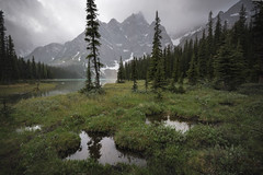 Silent Lakeshore {Explored} (Darren Umbsaar) Tags: park cloud mountain lake snow storm mountains reflection water rock forest rockies silent cloudy lakes rocky twin canadian calm hike mount upper trail national shore lakeshore banff lower arnica