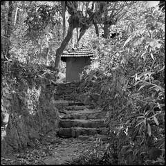 House, remote hill village, the Konkan. (_quasi) Tags: konkan village house remote hills mountain