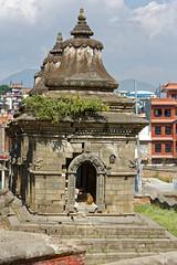 DS1A4168dxo (irishmick.com) Tags: nepal kathmandu 2015 guhyeshwori guhyeshwari bagmati ghat