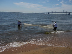 Sandy Point (AccessDNR) Tags: statepark fishing education sein outreach 2016 sandypoint vamosapescar