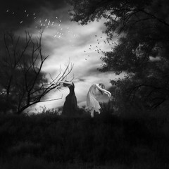 birds' dance (old&timer) Tags: blackandwhite art girl composite digital model background surreal fantasy infrared oldtimer deviantart imagery faestock song4u meetmeatthelake2nite laszlolocsei