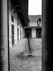 In-between. (Am@ndeen) Tags: travel roof castle history rain outside noir noiretblanc line direction walls chateau loire ligne stables discover pavs inbetween blanckandwhite curies chaumontsurloire