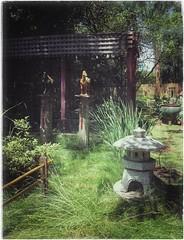 The stillness and serenity of my Zen Garden returns (Ronald (Ron) Douglas Frazier) Tags: gardens japanese illinois midwest lantern bloomington zengarden chinesehorses bonsaihouse