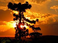 Fim de tarde (Ricardo Mercadante) Tags: sunset brazil paraná brasil pôrdosol toledo entardecer