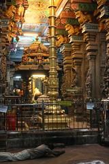 Madurai, Sri Meenakshi Temple, pilgrim