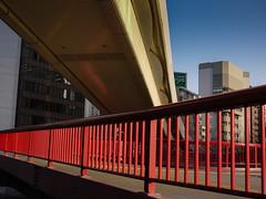 Red pedestrian bridge (hyossie) Tags: bridge japan lumix osaka gf1