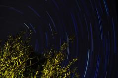 Star Trails (csevengo) Tags: arizona startrails nikon1755f28 nikond300 starstax