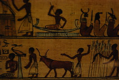 Book of the Dead of Neferini (konde) Tags: papyrus ancientegypt neuesmuseum bookofthedead ptolemaicperiod