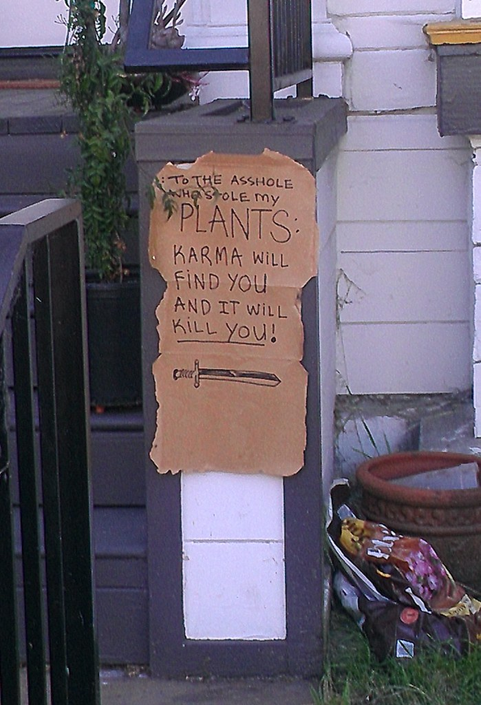 To the asshole who stole my PLANTS: KARMA WILL FIND YOU AND IT WILL KILL YOU!