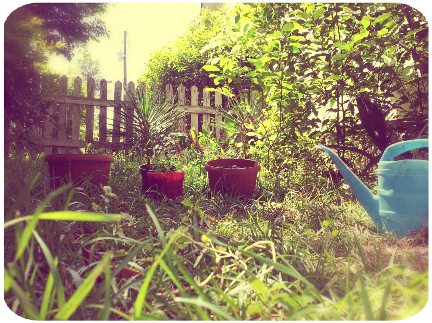 2012-04-08 14.45.00_Melissa_Round.jpg