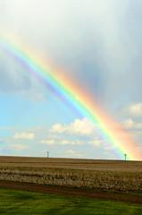 Rainbow (C-Dals) Tags: sky clouds rainbow nikon alberta prairie nikkor 205 96 70300mmf4556gvr tp205 sh96 d5100