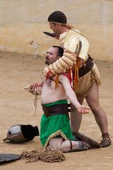 Killing the gladiator (Mark Carline) Tags: fight day cheshire roman amphitheatre chester gladiator mbna chestival