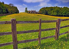 (PhotoArt Images) Tags: uk england fence countryside cotswolds explore englishcountryside buttercups photoartimages