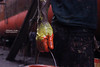 Painted (Mahmud Alam) Tags: world show life light boy shadow man black color colour detail art yellow creativity bride focus king artist foto hand creative lifestyle sharp simplicity painter 365 visuals shape tone bangladesh struggle fotografi day141 sense vlack cmposition beautifiul platinumpeaceaward canon550d doubleniceshot mygearandme mygearandmepremium mygearandmebronze mygearandmesilver mygearandmegold mygearandmeplatinum mygearandmeplatinium artistoftheyearlevel3 artistoftheyearlevel4 artistoftheyearlevel5 artistoftheyearlevel7 artistoftheyearlevel6